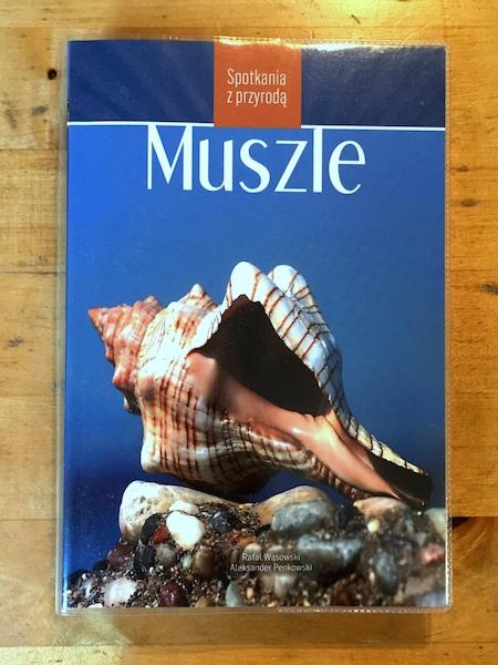 Muszle